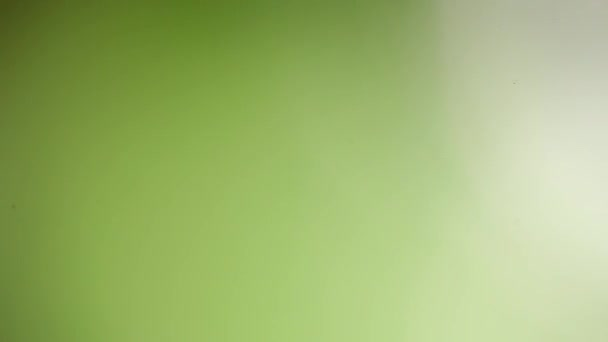 beautiful green background, diffuse blurred nature