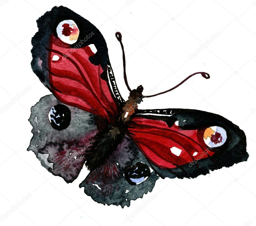 Niedliche Schmetterling Abbildung — Stockfoto © Tverdohlib.com #99732444