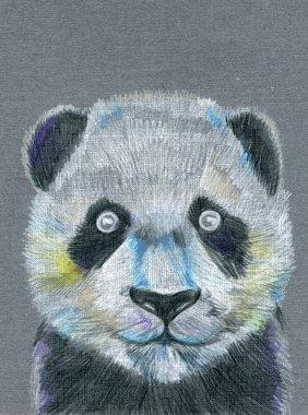 Panda muzzle illustration