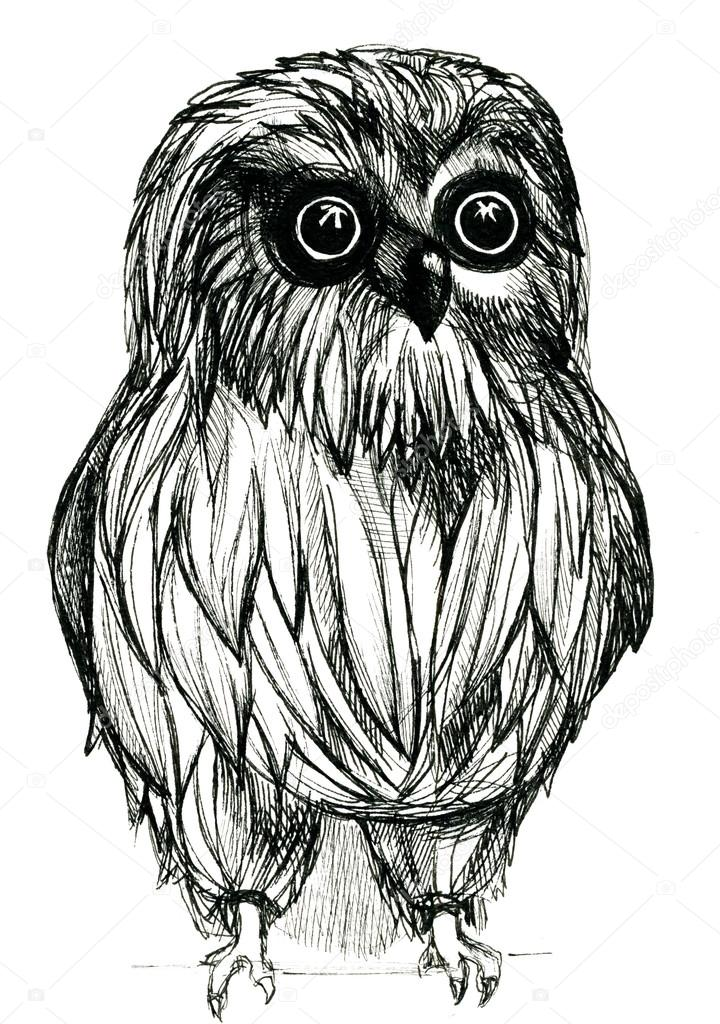 closeup pleasing artistic black and white owl guardant pen and ink drawing freehand sketch texture paper over white background vertical picture zdja cie