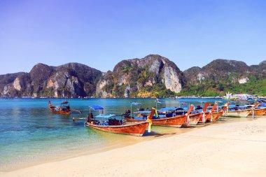 Amazing Koh Phi Phi in Thailand