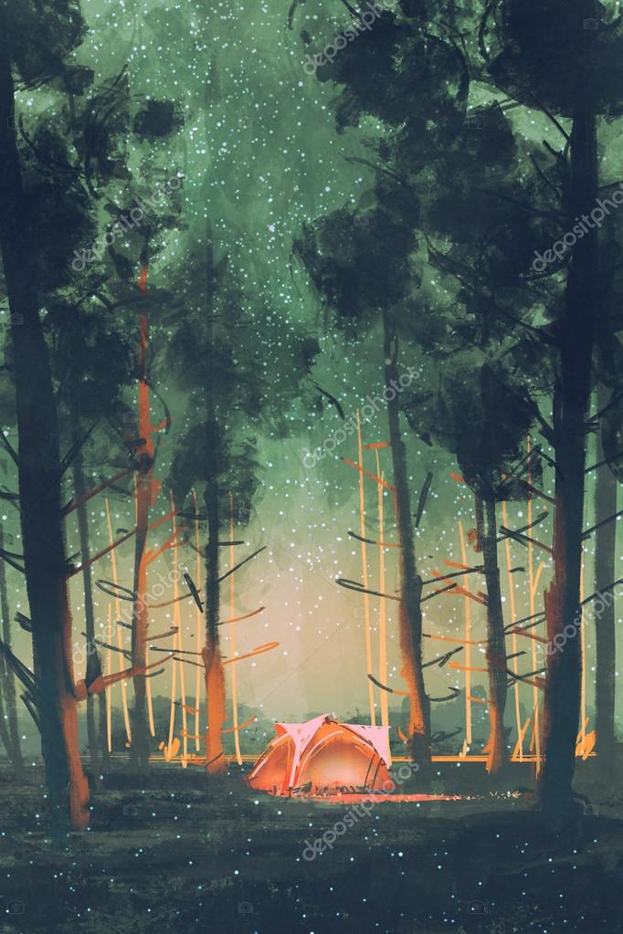 camping in forest at night with stars