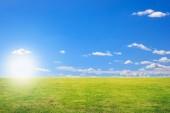 západ slunce a pole zelené čerstvé trávy pod modrou oblohou