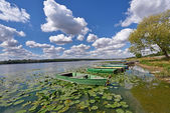 Fotografia Mistico paesaggio con barche tra i gigli di acqua su uno stagno su un