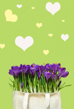 Abstrakt background with crocuses for greetings Happy Valentine or wedding in pastel colors (March 8, February 14). vintage style stock vector