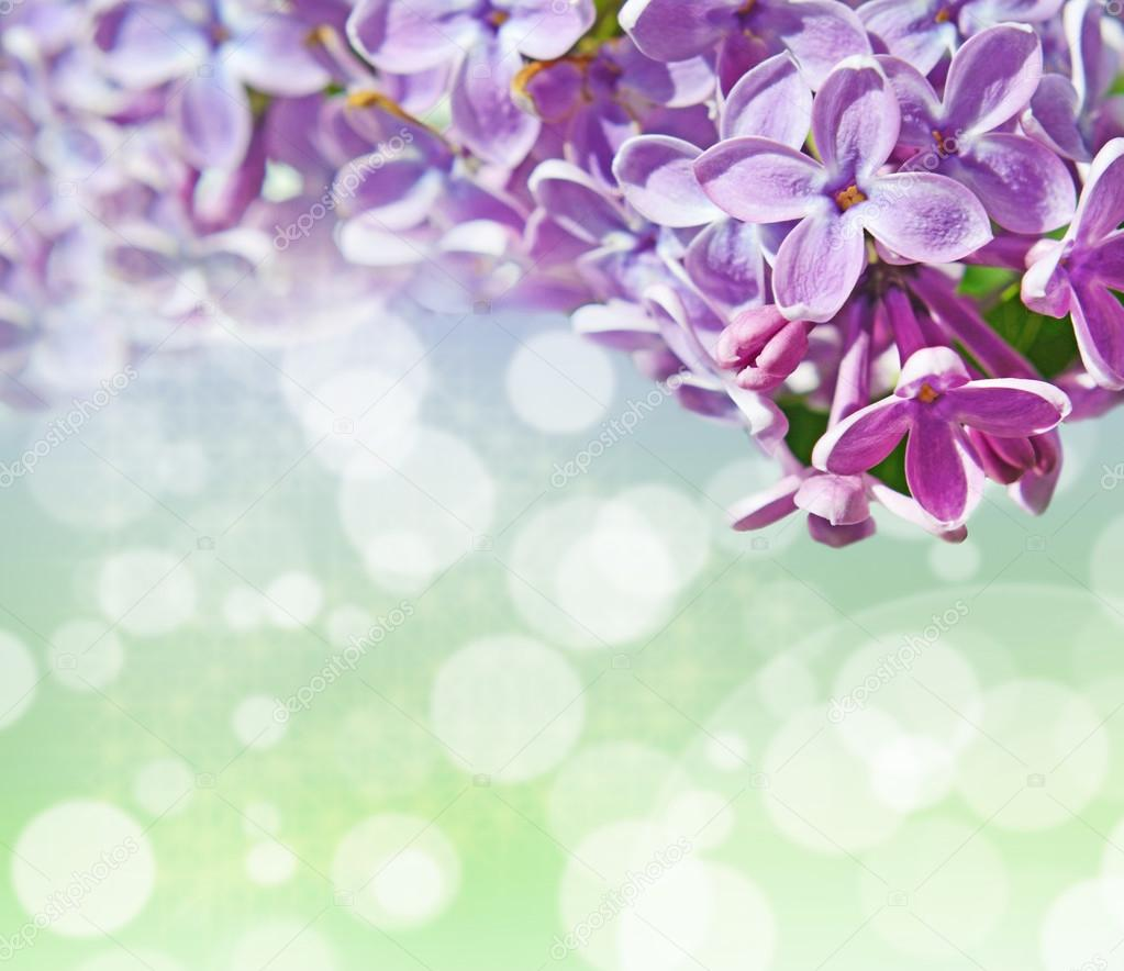 Abstrackt background with with lilacs for greetings Happy Valent