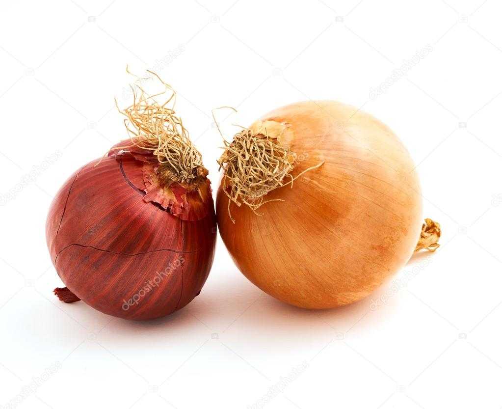 Two delicious onions
