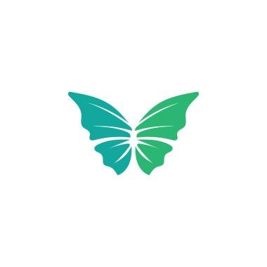 Vector Butterfly conceptual simple colorful icon Logo Vector Animal icon