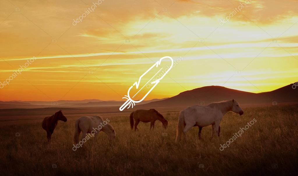 beautiful sunset and horses