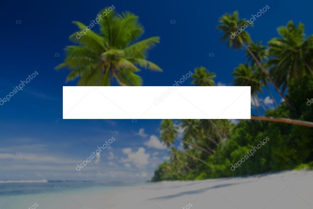 zonas tropicales y el marco de la barra de búsqueda — Fotos de Stock ...