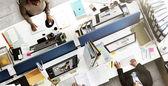 Profesionální okupace podnikání