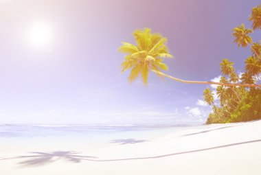 Beautiful view of ocean and beach