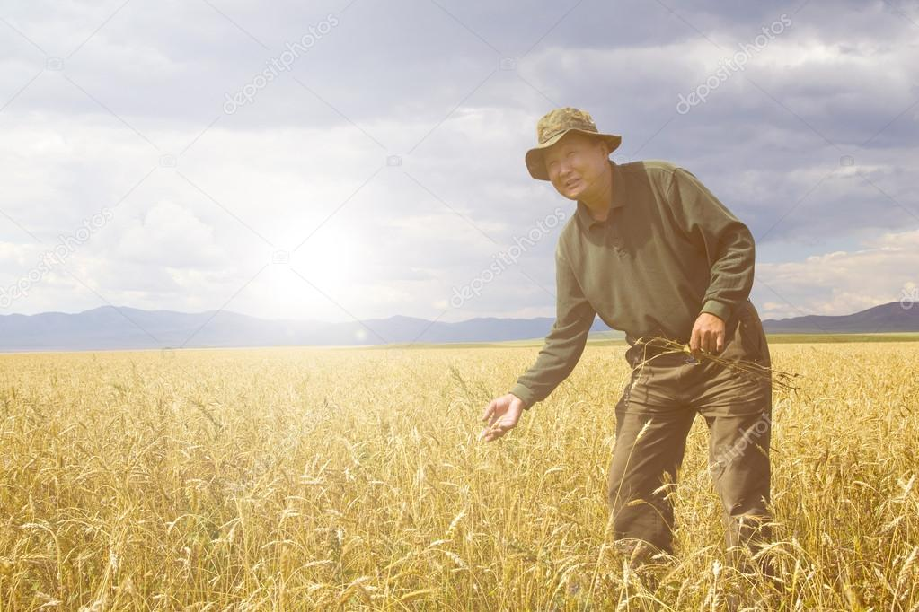 Man working in meadow