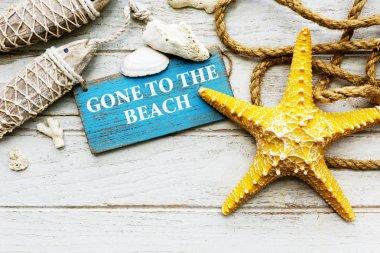 Beach Coast Nature Concept