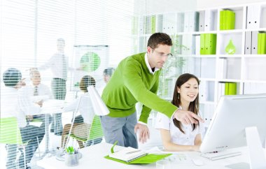 Partners working on computer