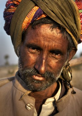 Indian man herding sheep