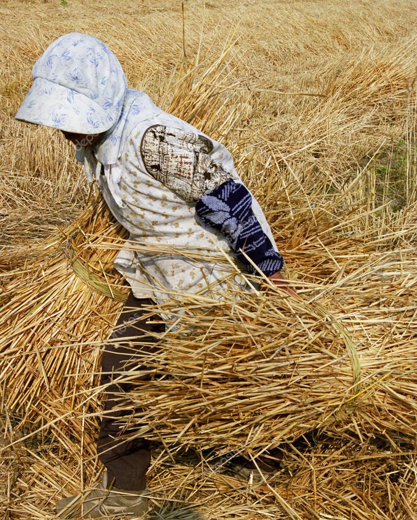 Senior female farmer moving hay