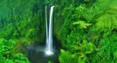 A természetben gyönyörű vízesés