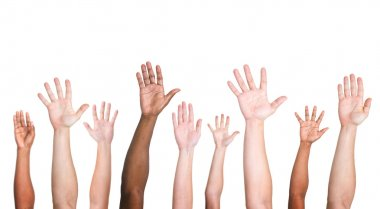 Diverse Ethnic Hands Variation Unity