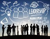 Diversità degli uomini daffari, gestione della Leadership
