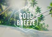 Chladný vánek letní svobodu koncept