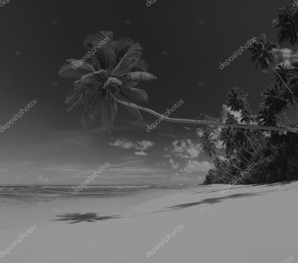 Summer Paradise Seascape Concept