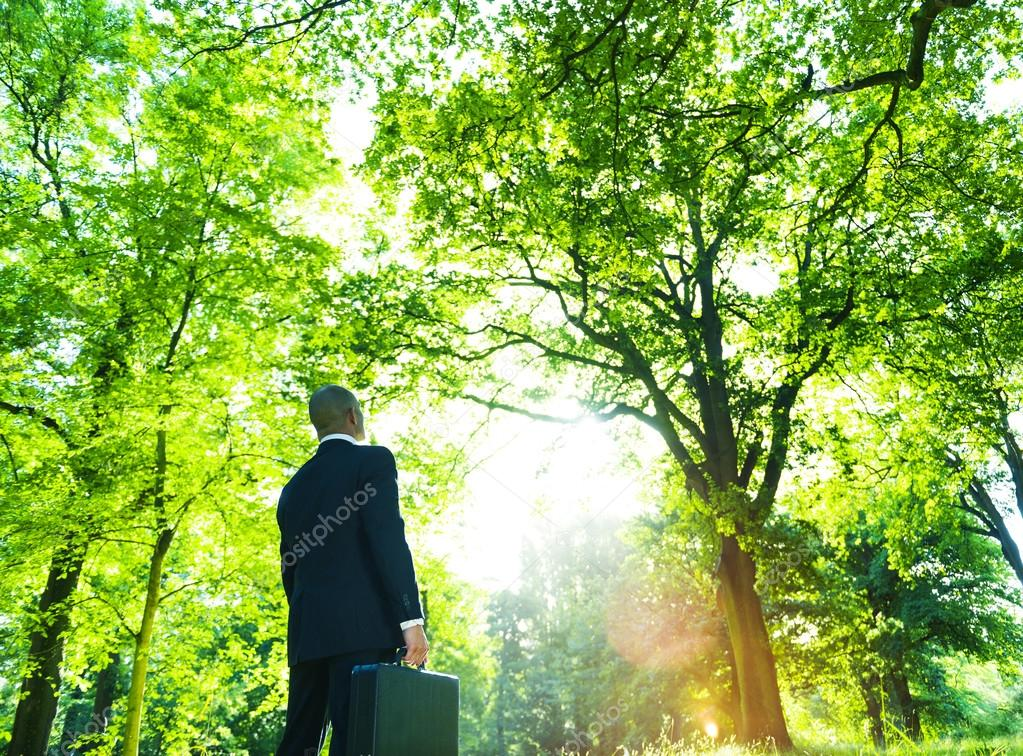 businessman standing in green forest