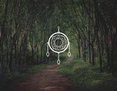 Fényképek Dreamcatcher ikon-val a háttérben erdő