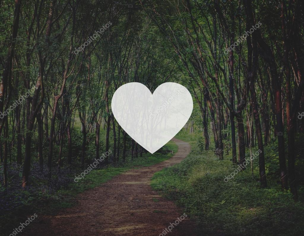 Heart Icon with   forest on  background