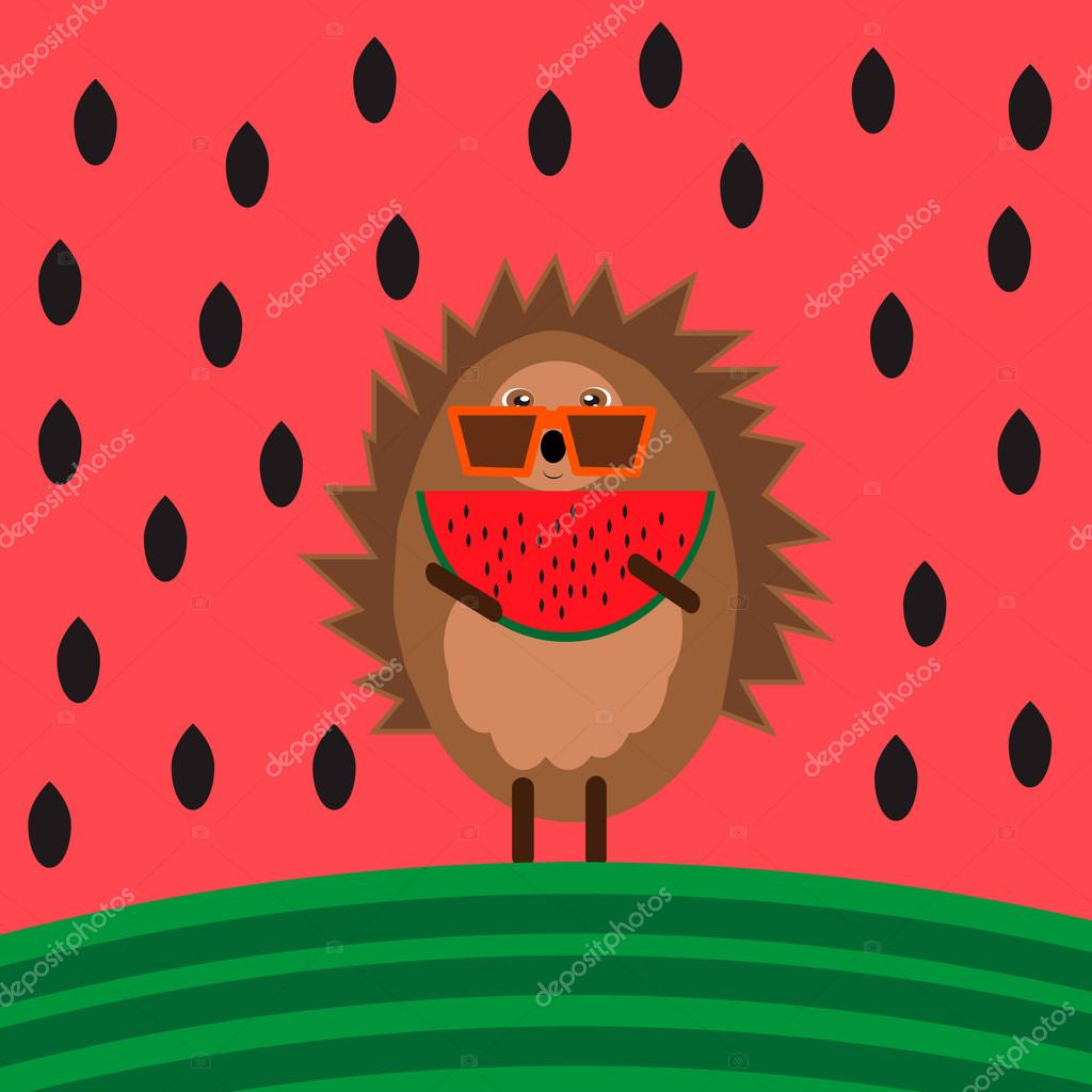 Illustration with hedgehog with piece of watermelon