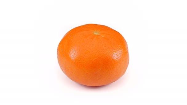 Mandarin orange spinning seamless