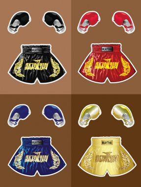 Boxing gloves and thai boxer shorts set