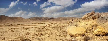 landscape, panorama, views of Israel, Jerusalem, the holy places, the city of three religions, Eilat, the Negev desert, the Dead Sea, Jordan, Lake of Gennesaret, Tiberias Sea, Emmaus, journey