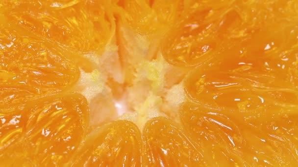 oranžové makro snímek.
