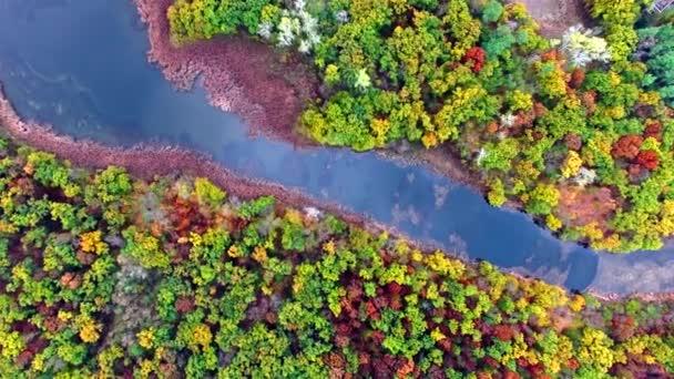 A légi felvétel a folyó őszi erdő