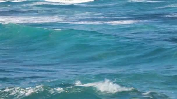 Vlny oceánu u pobřeží