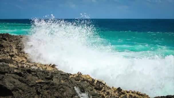 Ocean wave splash a zátony