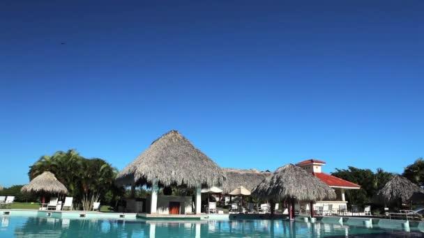Pohled od bazénu na palmy