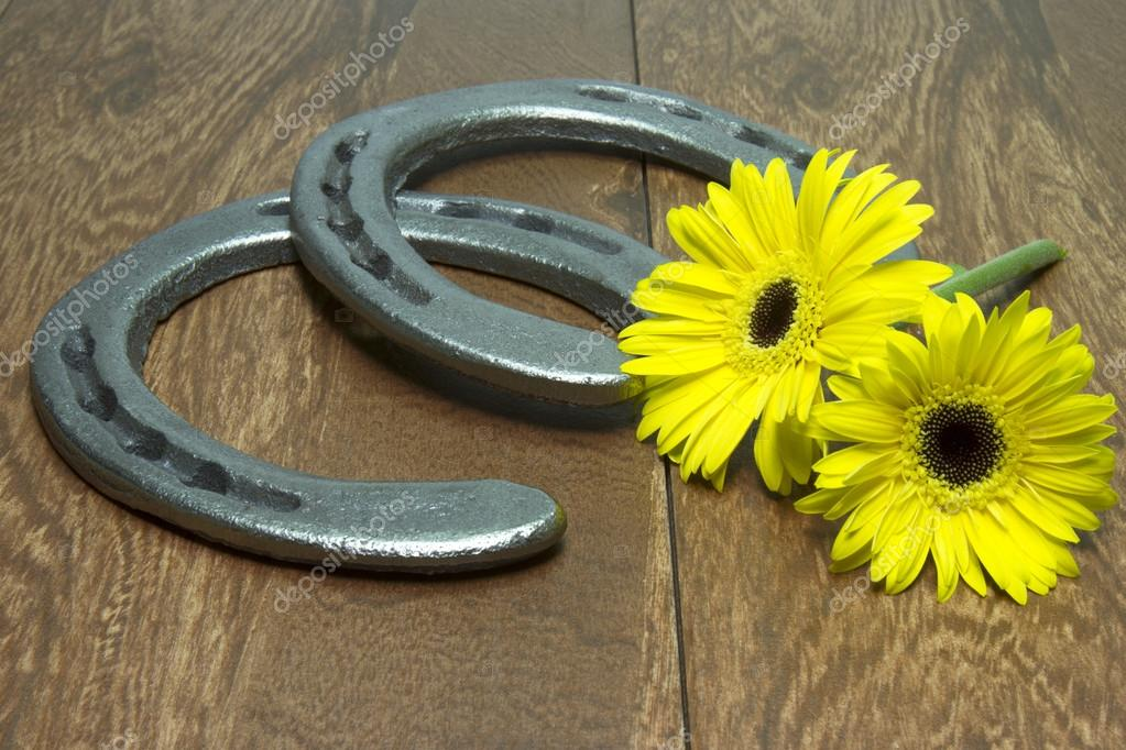 Preakness Stakes Black Eyed Susans with Horseshoes on Wood