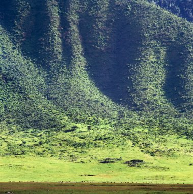 Ngoro-ngoro national park, Tanzania.