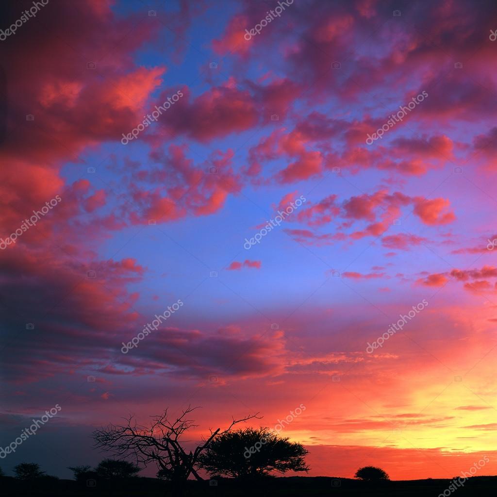 Sfondo della bellissima natura foto stock gi0572 82362944 for Immagini sfondo natura