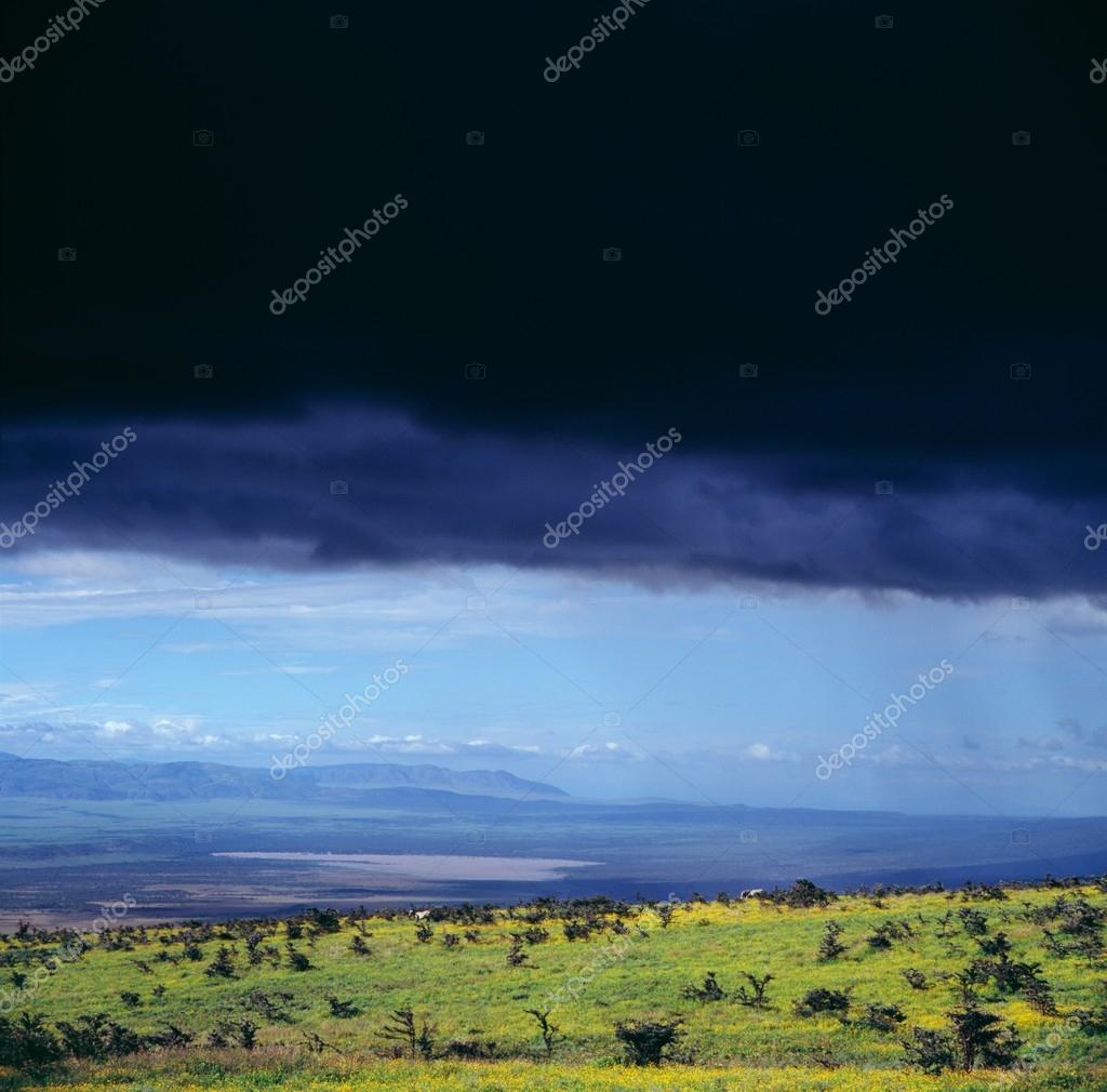Landscape of Botswana before storm