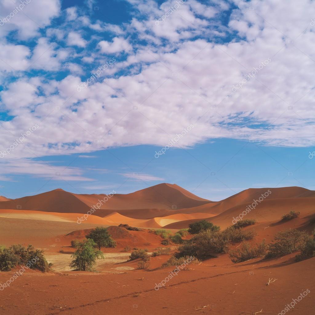 Gold desert in blue cloudy sky