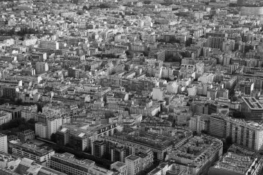 black and white photo of the top view of Paris sleeping neighbor