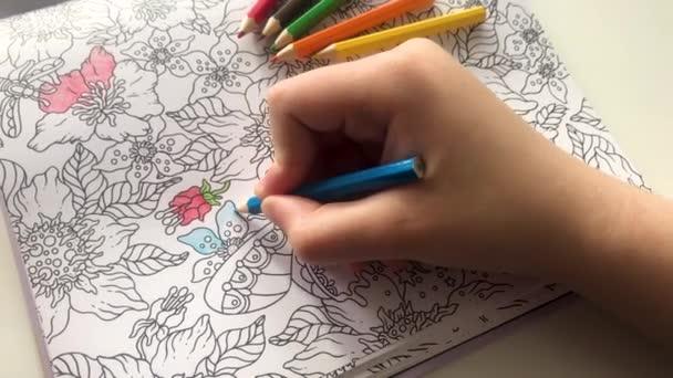 Valaki fiatal kéz festi minták anti-stressz színező könyv kék ceruza, és színes ceruzák mellettük. Zen művészet, firka minták fekete-fehér. Zen kusza, kifestőkönyvek