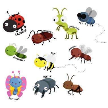 Bugs Vector Set