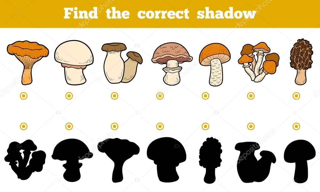 Find the correct shadow, education game about edible mushrooms