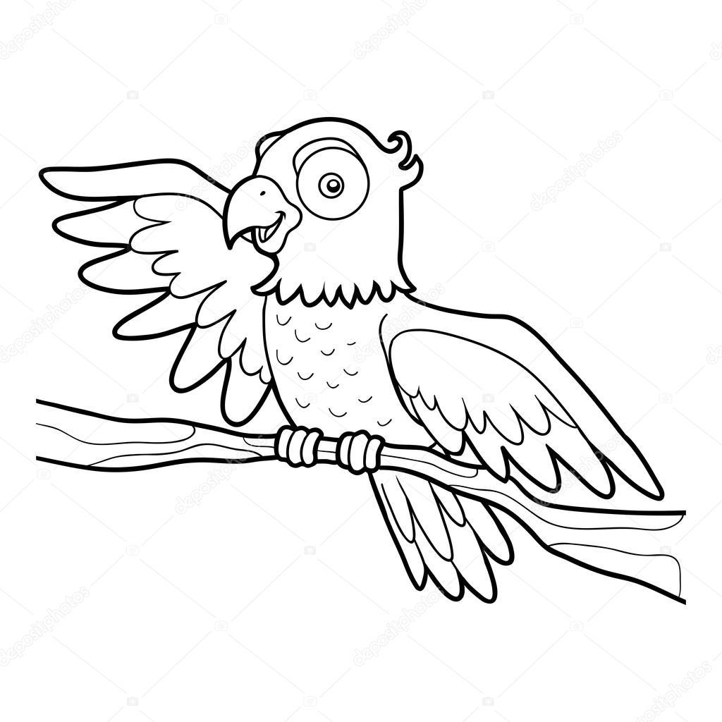 Boyama Kitabı Papağan Stok Vektör Ksenyasavva 122226746