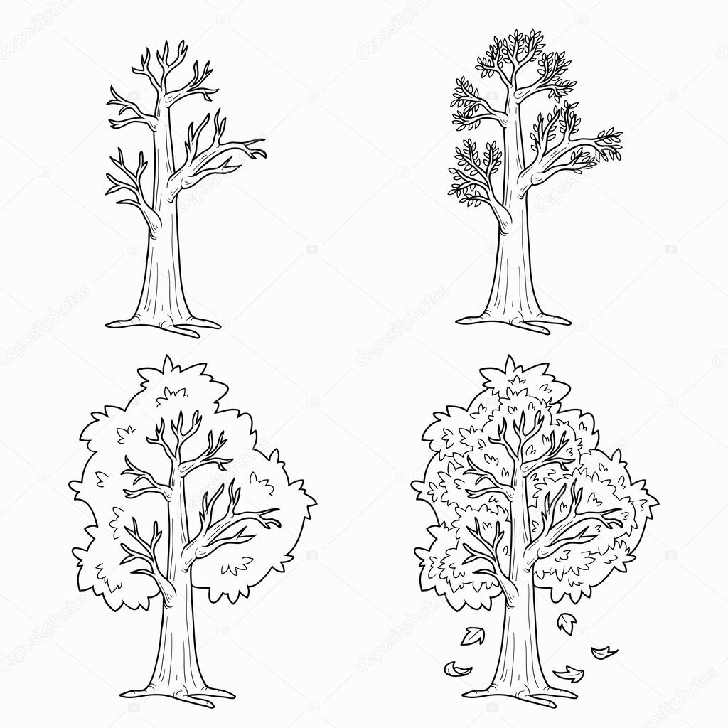 Coloring Book Four Seasons Vector Set Of Trees Stock Vector