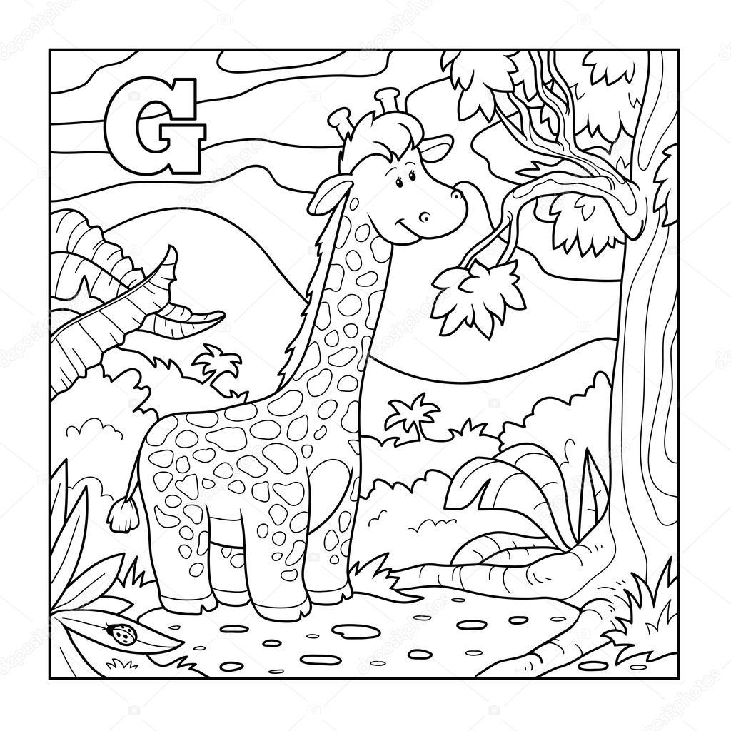 Libro Da Colorare Giraffa Incolore Alfabeto Per Bambini Lettera